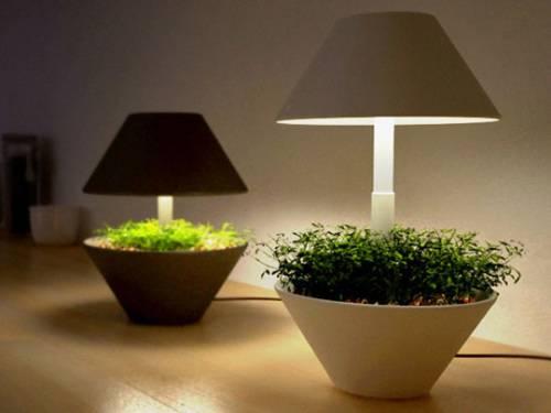 Лампа для комнатных растений