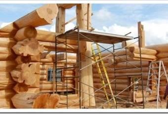 Лучшее дерево для строительства дома по всем параметрам