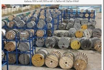 Технические особенности кабеля ППГнг