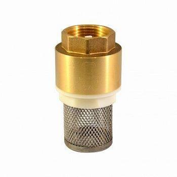 Купить Обратный клапан с сеткой СТМ CBCVF001 1 дюйм